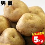出荷開始 越冬じゃがいも 送料無料 北海道産 男爵薯(M-2L混合) 1箱5キロ入り / 5kg 男爵 男爵芋 だんしゃく いも ジャガイモ 北海道 野菜