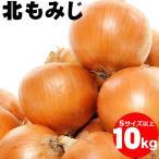 出荷開始 送料無料 北海道産 玉ねぎ(北もみじ)10kg(Lサイズ)/ 正規品 Lサイズ 玉葱 たまねぎ 野菜 新玉ねぎ タマネギ
