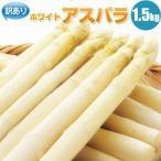蘆筍 - ホワイトアスパラガス アスパラ1.5kg 北海道産 訳あり S/2L混