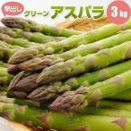 蘆筍 - アスパラガス グリーンアスパラ 3kg 北海道産 L/2L混 早出し