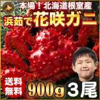 花蟹 - 花咲ガニ 900g × 3尾 希少な 花咲ガニ 北海道産 カニ