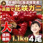 花蟹 - 花咲蟹 1.1kg × 4尾 希少な 花咲蟹 北海道産 蟹