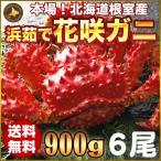 お歳暮ギフト / 花咲ガニ900g×6尾希少な花咲ガニ