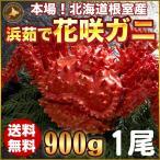 人気のカニ「花咲ガニ」ほっけ一夜干し2尾付。北海道の蟹の中でも最も個性的な花咲ガニ。花咲ガニは北海道...