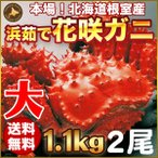 人気のカニ「花咲ガニ」時鮭2切れ1パック付。北海道の蟹の中でも最も個性的な花咲ガニ。花咲ガニは北海道...