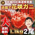 花蟹 - 花咲蟹 1.1kg × 2尾 希少な 花咲蟹 北海道産 蟹