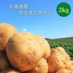 新じゃがいも 早生きたあかり L 2kg 北海道産 じゃがいも ジャガイモ