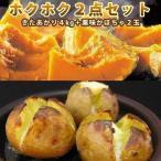じゃがいも かぼちゃ のホクホク2点セット キタアカリ L/2L 4kg・栗味かぼちゃ 2玉