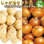 北海道産じゃがいも・たまねぎのじゃが玉セットA(きたあかりL/2L 5kg 玉ねぎ4kg)