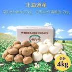 白玉ねぎ 北海道 じゃが玉セットT(早生きたあかり 2kg 白玉ねぎ 2kg) 生で食べても辛くなーい(小玉品種)
