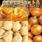 北海道野菜セットA きたあかりL/2L 4kg かぼちゃ 2玉 玉ねぎ 4kg 北海道野菜セット