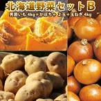 北海道野菜セットB 男爵 L/2L 4kg かぼちゃ 2玉 玉ねぎ 4kg 北海道野菜セット