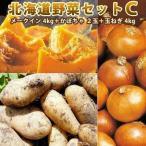北海道野菜セットC メークイン L/2L 4kg かぼちゃ 2玉 玉ねぎ 4kg 北海道野菜セット