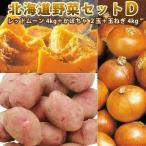 北海道野菜セットD レッドムーン L/2L 4kg かぼちゃ 2玉 玉ねぎ 4kg 北海道野菜セット