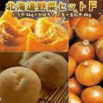 北海道野菜セットF とうや L/2L 4kg かぼちゃ 2玉 玉ねぎ 4kg 北海道野菜セット