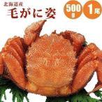毛ガニ 500g 1尾 北海道 毛蟹 カニ 蟹 かに ギフト