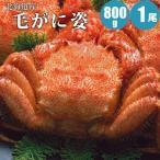 毛ガニ 800g 1尾 北海道 毛蟹 蟹 かに カニ ギフト