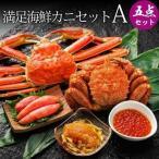 其它 - カニセット 毛ガニ 1尾 ズワイガニ 1尾 かに カニ 蟹 北海道産 満足海鮮カニセットA