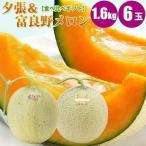 夕張メロン 富良野メロン 食べ比べ 1玉 1.6kg× 6玉 メロン 通販