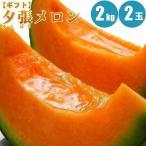 夕張メロン 2kg× 2玉 メロン 夕張メロン 北海道 通販