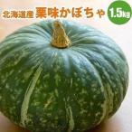 北海道産 栗味 かぼちゃ 1玉1.5kg以上 栗のような味の カボチャ