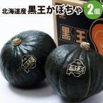 北海道産 黒王かぼちゃ 2個(1個1.6〜2kg前後)