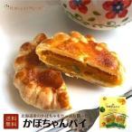 佐呂間名物 かぼちゃんパイ 6個 個包装 お菓子 お茶菓子 内祝 御祝 お返し 誕生日 ギフト