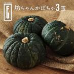 ファームウメムラ 坊ちゃんかぼちゃ3玉
