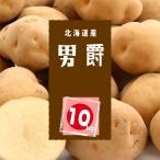 【送料無料】 北海道産 男爵 10kg サイズLM混載 新じゃが ほくほく 【農家直送】 じゃがいも お取り寄せ ギフト