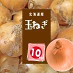 【送料無料】 北海道産 玉ねぎ 10kg サイズLM混載 【農家直送】 北の大地 お取り寄せ ギフト
