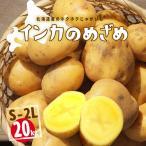 【送料無料】北海道産 インカのめざめ 越冬 20kg(S〜2L混合) ほくほく【農家直送】常温便 お取り寄せ 贈り物