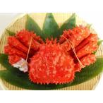 花蟹 - 発送直前、茹で上げ花咲ガニ(オス・約1.3kg前後)※活きた状態での重さです