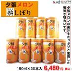 自社出荷「夕張メロン熟しぼり 缶190ml×30本入」常温