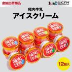 稚内市 産直「稚内牛乳アイスクリーム12個セット」冷凍
