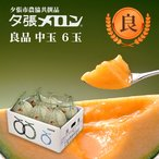 夕張メロン 共選 良品中玉(約1.3kg) 6玉1箱(代引不可)