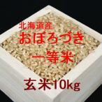 新米 北海道産おぼろづき 一等米 玄米10kg (平成28年産)