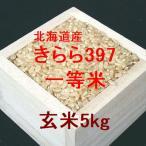 新米 北海道産きらら397 一等米 玄米5kg (平成28年産)