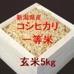 新潟県産コシヒカリ 一等米 玄米5kg (令和元年産)