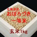 新米 北海道産おぼろづき 一等米 玄米1kg (平成28年産)