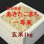 秋田県産あきたこまち 一等米 玄米1kg (令和元年産)