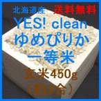 北海道産 YES! clean ゆめぴりか 一等米 玄米450g (令和元年産)