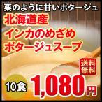 送料無料 メール便 インカのめざめポタージュ 10食セット 北海道 じゃがいも 1,000円ポッキリ