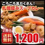 ポイント消化 スープカレー レトルトカレー 2食セット ホタテ チキン 豚角煮 3種類 選べる 北海道 札幌 1000円ポッキリ 送料無料