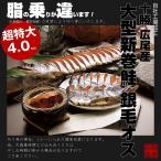 【送料無料】北海道十勝 広尾産 大型 新巻鮭 銀毛オス1本物(化粧箱入・真空包装)4kg前後