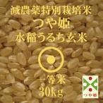令和2年産 つや姫 30kg 山形県産 減農薬 特別栽培米 玄米 一等米
