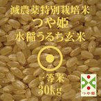 令和元年産 つや姫 30kg 山形県産 減農薬 特別栽培米 玄米 一等米