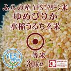 新米 令和2年産 YES!クリーン米 ふらの産 ゆめぴりか 30kg 玄米 一等米 第一区分 北海道米 品位検査済認証品