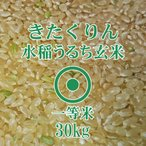 令和元年産 きたくりん 玄米 30kg 農薬節減米 一等米 北海道米