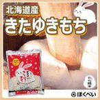 令和2年産 きたゆきもち 1kg×10袋 北海道産 もち米 送料無料