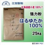 江別製粉 はるゆたか100 強力粉 25kg 北海道産 業務用